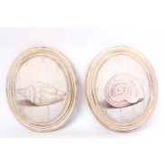 Obraz \SHELLS-oval wood\ 27x32x6/2dr.